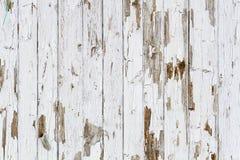 Старой предпосылка выдержанная белизной деревянная стоковая фотография rf