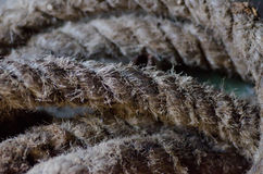 Старой серый цвет запутанный веревочкой стоковые фотографии rf