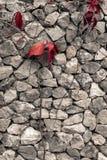 Старой текстура треснутая стеной Стоковое фото RF