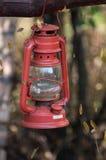 Старомодная винтажная смертная казнь через повешение лампы фонарика масла на ветви Стоковые Фотографии RF