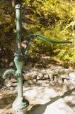 Старомодная водяная помпа в лесе Стоковые Изображения
