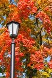Старомодный фонарный столб Стоковое Фото