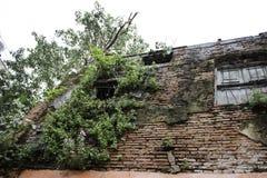 стародедовская дом Стоковое Фото