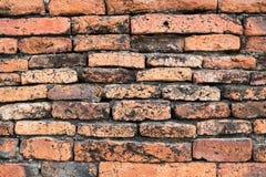 стародедовская стена Стоковые Фото