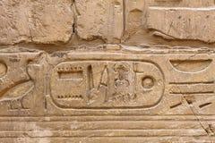 Стародедовские иероглифы Египета Стоковые Изображения RF
