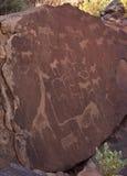 стародедовские петроглифы Намибии Стоковое Изображение RF