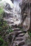 стародедовские руины picchu huayna Стоковые Изображения