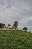 стародедовские стены Стоковое Изображение
