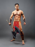стародедовский ратник Стоковое Фото