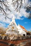 стародедовское буддийское stupa Стоковая Фотография