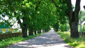 Стародедовское поместье в Беларуси сток-видео