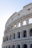 стародедовское colosseum rome Стоковые Изображения RF