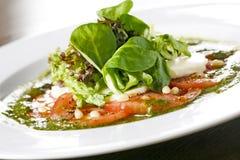 стартер салата mozzarella Стоковые Изображения