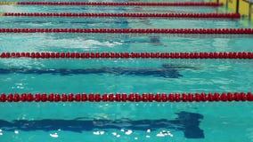 Старт и отделка конкуренции заплывания видеоматериал