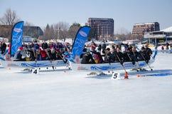 Старт состязания по гребле дракона льда Стоковая Фотография