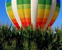 Старт утра использующего горячего воздух воздушного шара над кукурузным полем Стоковая Фотография RF