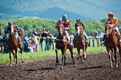 Старт участвуя в гонке лошадей начиная гонку Стоковые Изображения