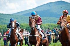 Старт участвуя в гонке лошадей начиная гонку Стоковое фото RF