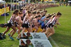 старт школы гонки перекрестных девушок страны высокий Стоковые Фотографии RF