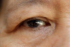 старуха глаза Стоковое Изображение