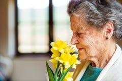 Старшая женщина букетом окна пахнуть daffodils Стоковые Фотографии RF