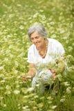 Старшая женщина в поле Стоковое фото RF
