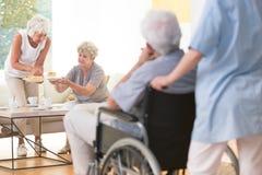 Старшая женщина давая торт стоковая фотография