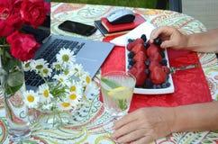 Старшая женщина ест свежие ягоды и независимую работу на компьтер-книжке в саде лета стоковая фотография rf