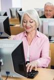 Старшая женщина используя настольный ПК в классе Стоковые Изображения RF