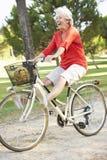 Старшая женщина наслаждаясь ездой цикла Стоковые Изображения RF