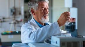 Старшее исследование приведения в исполнение профессора/доктора химии экспериментирует стоковые фото