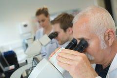 Старшее мужское научное исследование приведения в исполнение исследователя в лаборатории стоковое фото rf