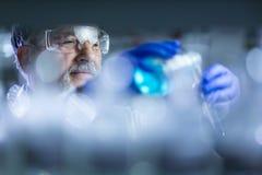 Старшее мыжское научное исследование приведения в исполнение исследователя в лаборатории Стоковые Изображения RF