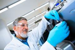 Старшее мыжское научное исследование приведения в исполнение исследователя в лаборатории Стоковая Фотография
