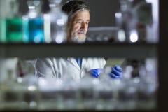 Старшее мыжское научное исследование приведения в исполнение исследователя в лаборатории Стоковые Изображения
