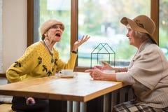 Старшие дамы на таблице кафа Стоковая Фотография RF