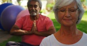 Старшие друзья выполняя йогу в саде 4k видеоматериал