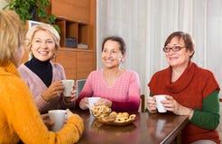 Старшие женские друзья выпивая кофе стоковое изображение rf