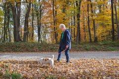 Старшие женщина и собака Стоковое Изображение RF