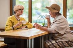 Старшие женщины выпивая кофе Стоковая Фотография
