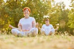 Старшие женщины делая йогу в парке Стоковые Изображения