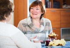Старшие женщины имея переговор Стоковое Изображение