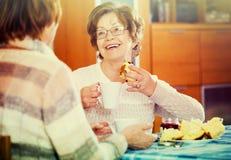 Старшие женщины имея переговор стоковая фотография