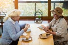 Старшие женщины с таблеткой стоковая фотография