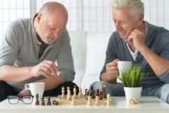 Старшие люди играя шахмат стоковая фотография rf