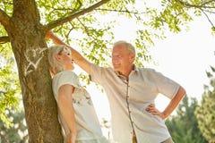 Старшие пары в влюбленности под деревом Стоковое фото RF