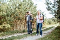 Старшие пары в лесе стоковая фотография