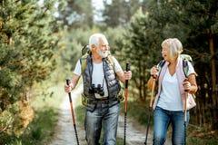 Старшие пары в лесе стоковое изображение