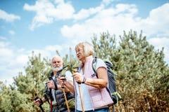 Старшие пары в лесе стоковые фотографии rf