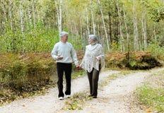 Старшие пары в осени Стоковые Изображения